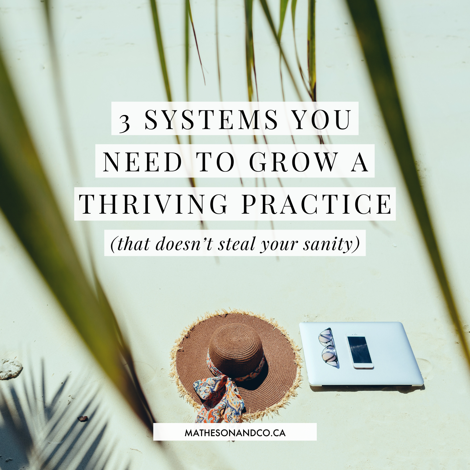 3 Systems You Need to Grow a Thriving Practice (That doesn't steal your sanity)