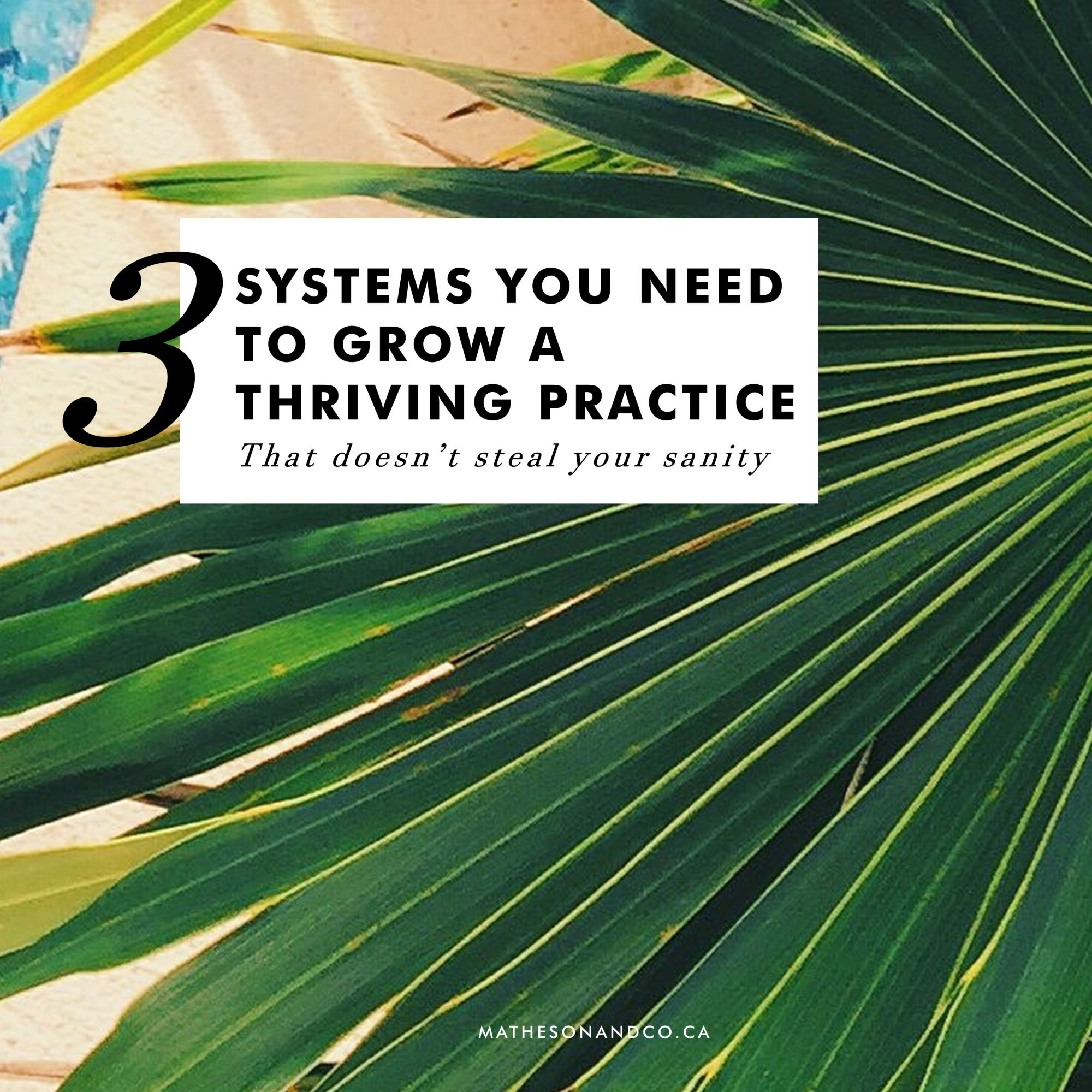 3 Systems You Need to Grow a Thriving Practice