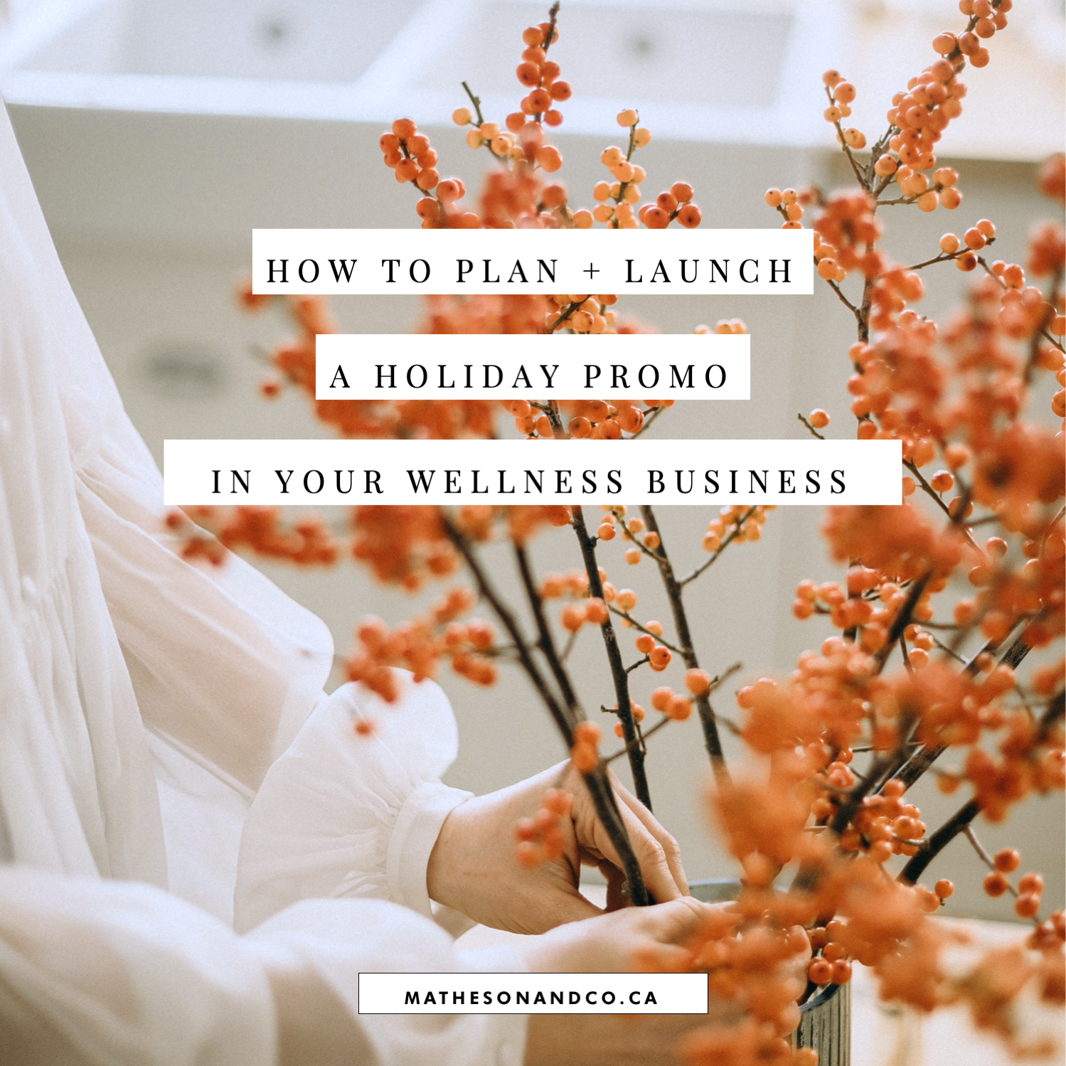 how to plan and launch a simple automated holiday promo in your wellness business